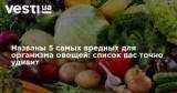 Названы 5самых вредных для организма овощей: список вас точно удивит