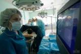 Медицинские учреждения в регионах получают стенты для бесплатных операций при остром инфаркте миокарда - DOH