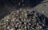ГФС отчиталась об импорте угля: половина - из России