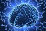 Очаговые изменения вещества мозга словарь символов: симптомы, диагностика и лечение